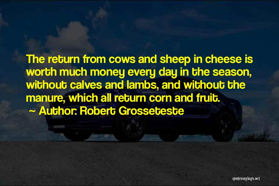 Calves Quotes By Robert Grosseteste