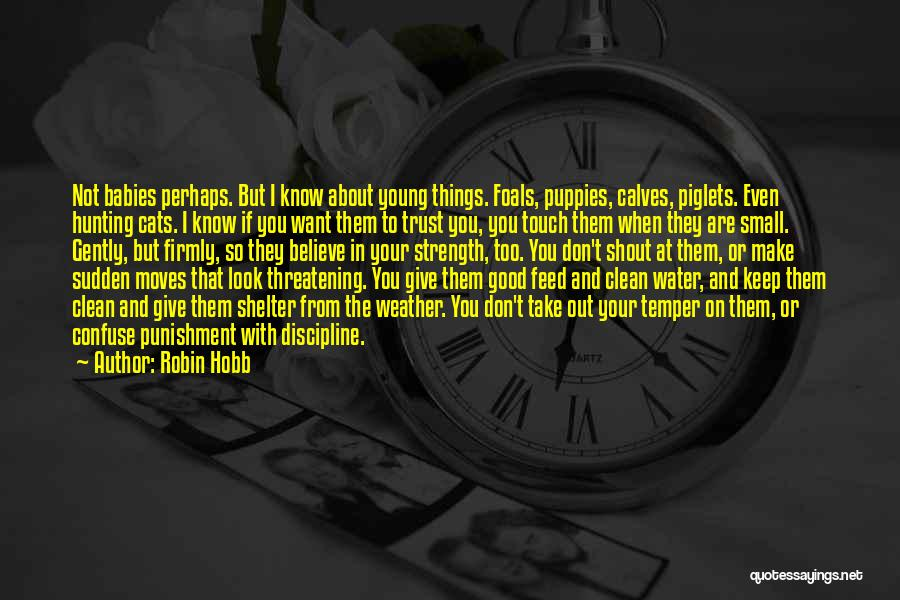 Calves Quotes By Robin Hobb