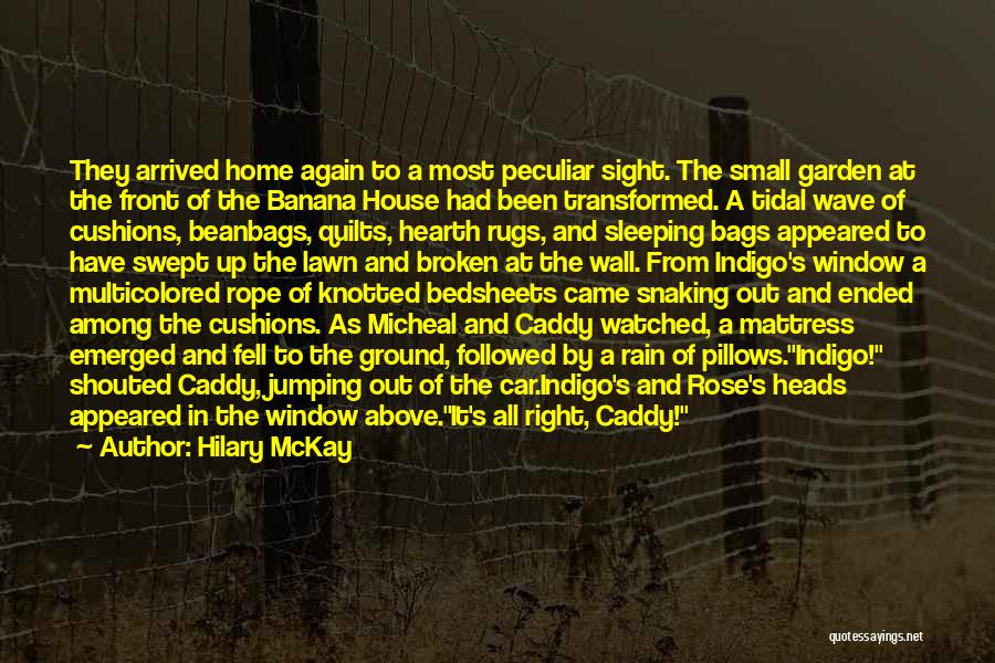 Came And Gone Quotes By Hilary McKay