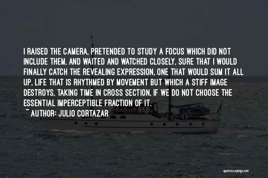 Cameras And Life Quotes By Julio Cortazar