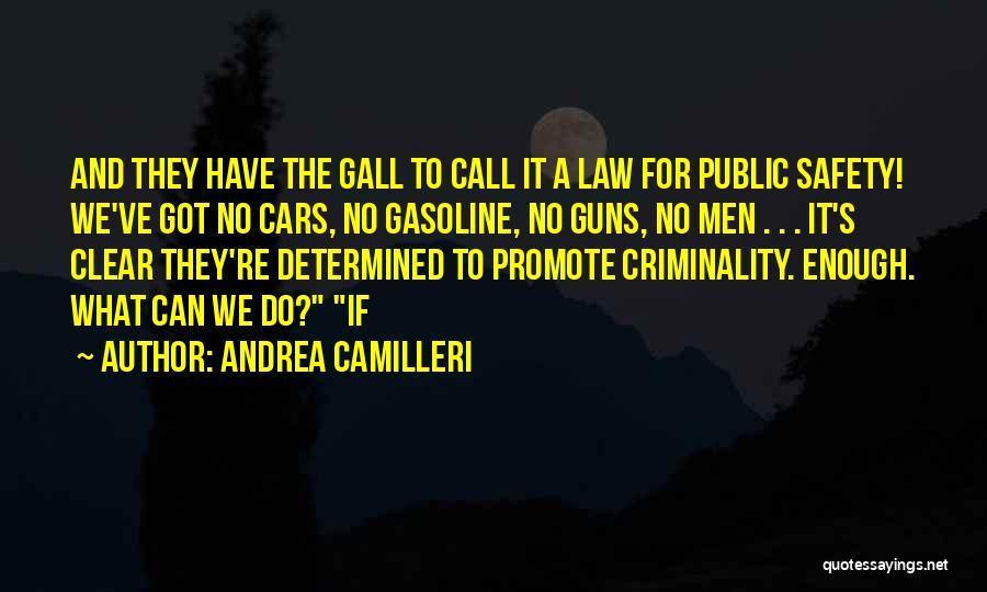 Camilleri Quotes By Andrea Camilleri