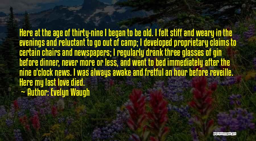 Camp Out Quotes By Evelyn Waugh