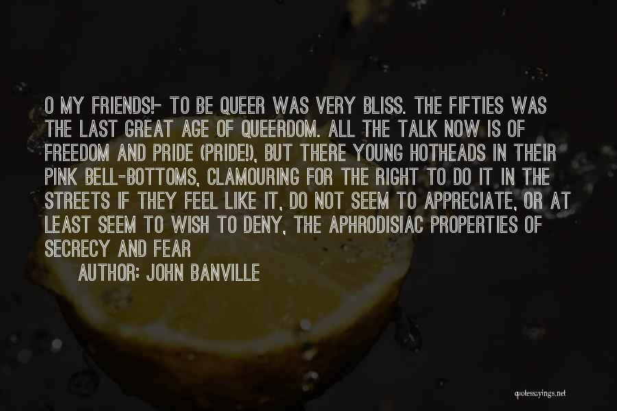 Can We At Least Be Friends Quotes By John Banville