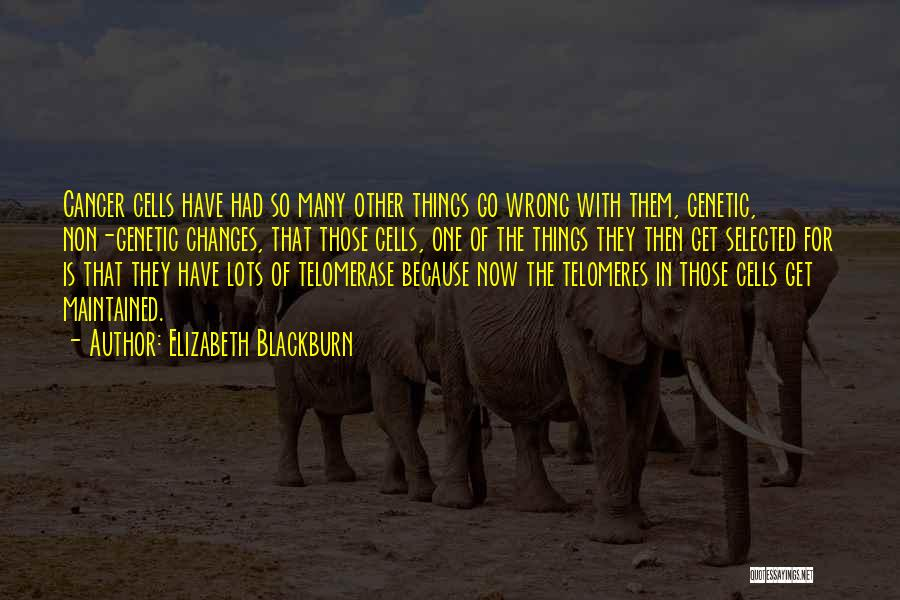 Cancer Cells Quotes By Elizabeth Blackburn