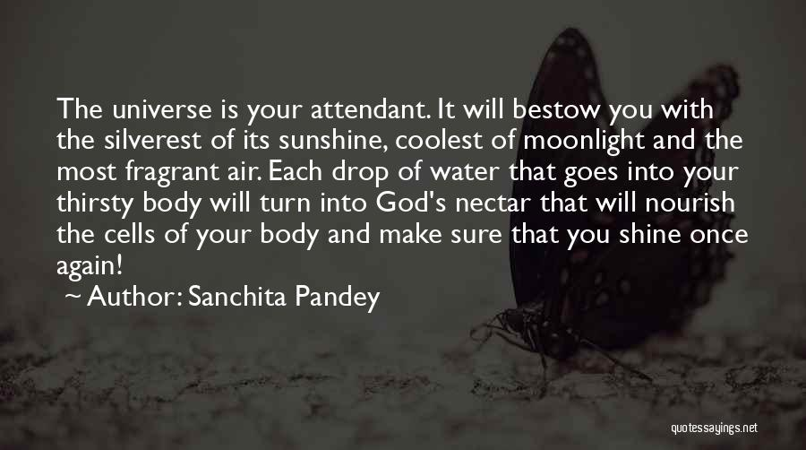 Cancer Cells Quotes By Sanchita Pandey