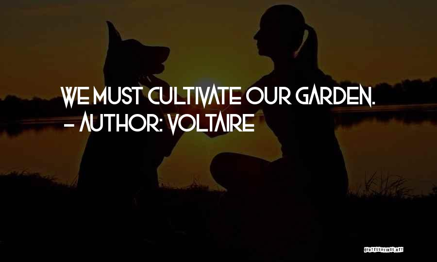 Candid Quotes By Voltaire