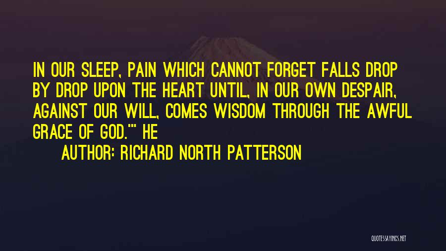 Cannot Forget Quotes By Richard North Patterson