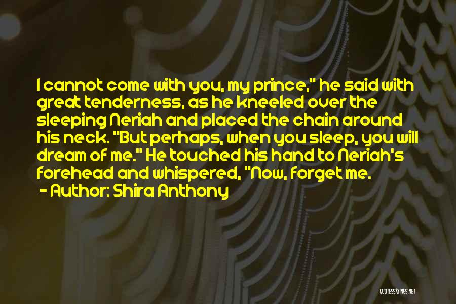 Cannot Forget Quotes By Shira Anthony