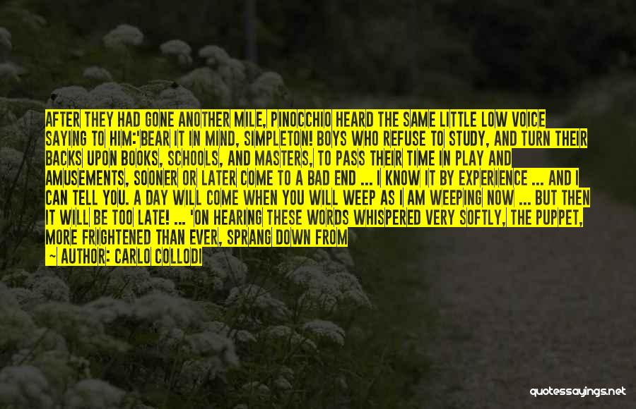 Cannot Turn Back Time Quotes By Carlo Collodi