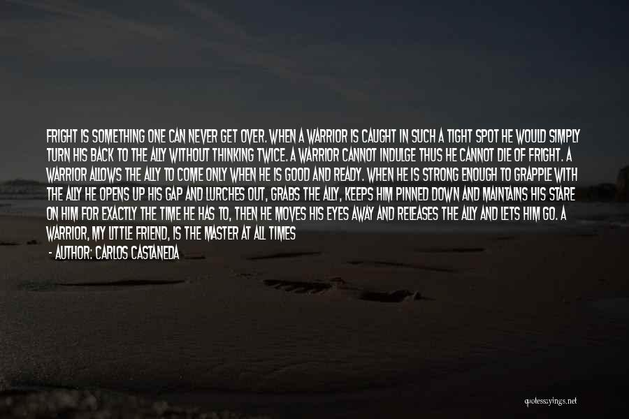 Cannot Turn Back Time Quotes By Carlos Castaneda
