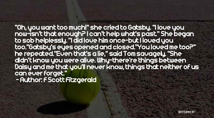 Can't Forget Him Quotes By F Scott Fitzgerald