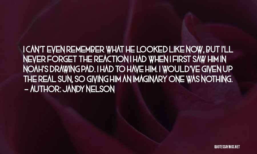 Can't Forget Him Quotes By Jandy Nelson