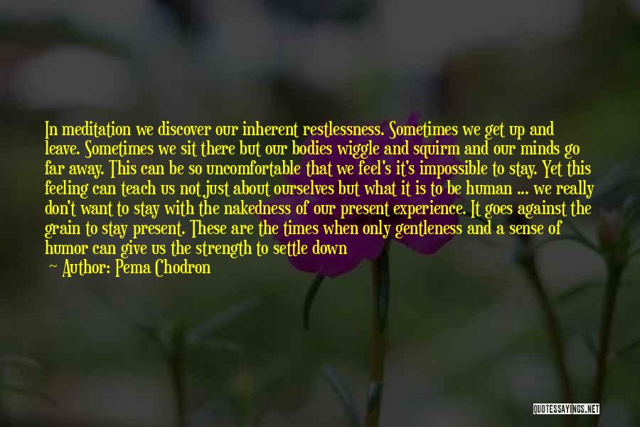 Can't Sit Down Quotes By Pema Chodron