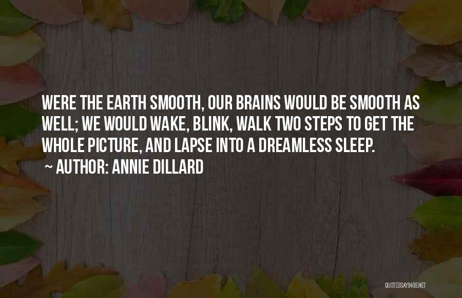Can't Sleep Picture Quotes By Annie Dillard