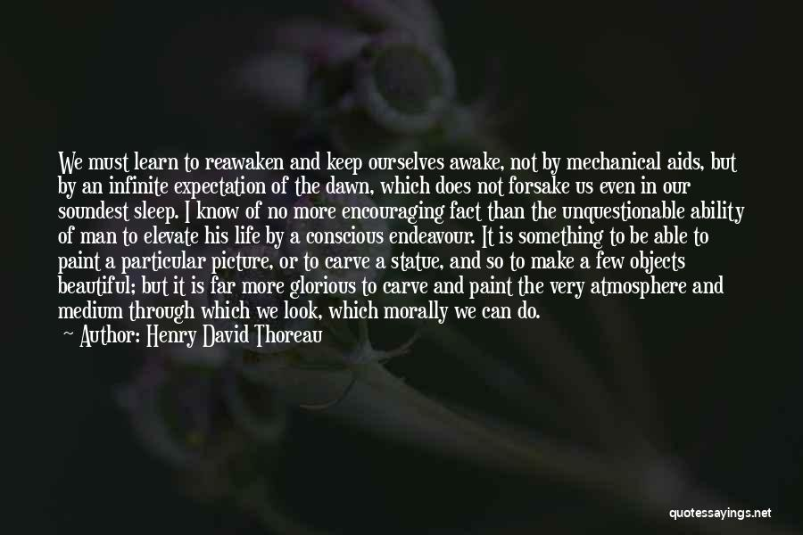 Can't Sleep Picture Quotes By Henry David Thoreau