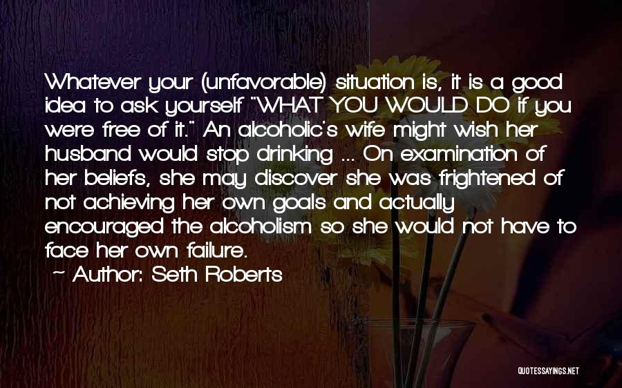 Can't Stop Drinking Quotes By Seth Roberts