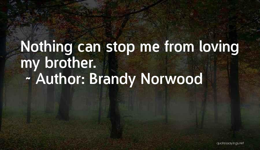 Can't Stop Loving Quotes By Brandy Norwood