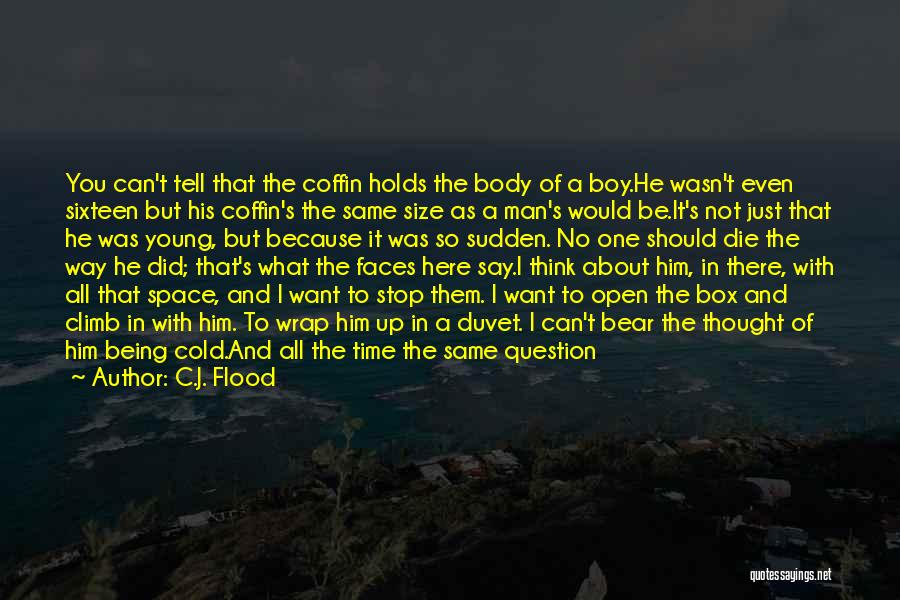 Can't Stop Loving Quotes By C.J. Flood
