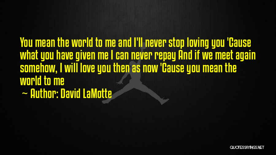 Can't Stop Loving Quotes By David LaMotte