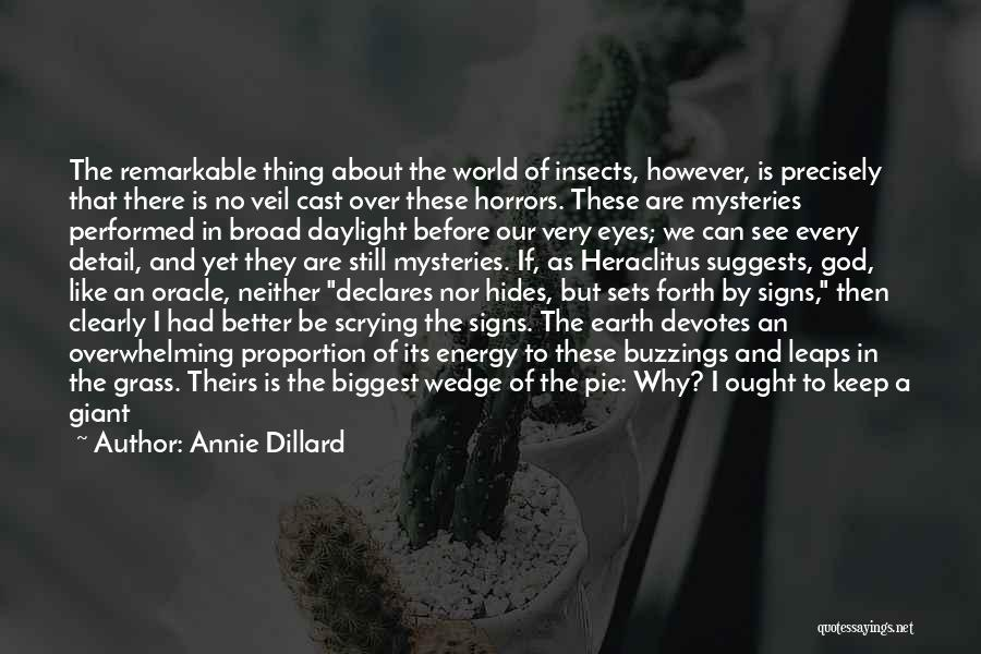 Can't Think Clearly Quotes By Annie Dillard