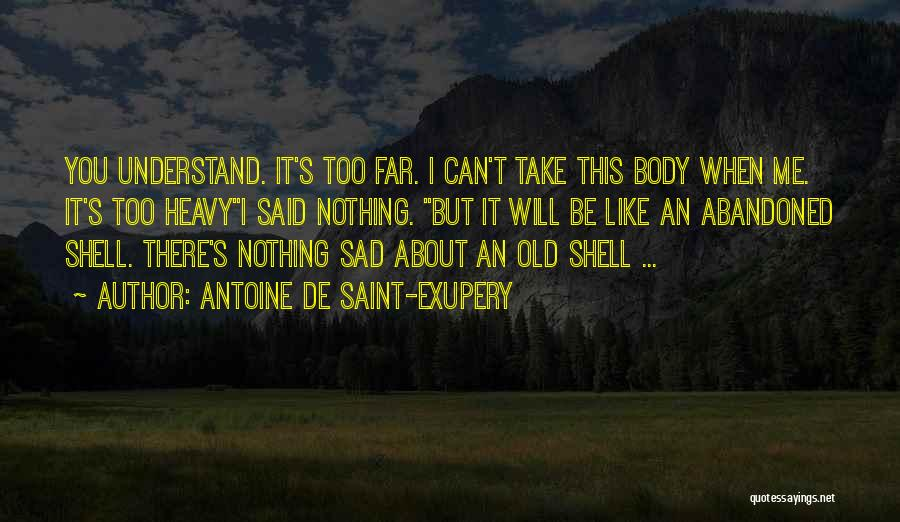 Can't Understand Me Quotes By Antoine De Saint-Exupery