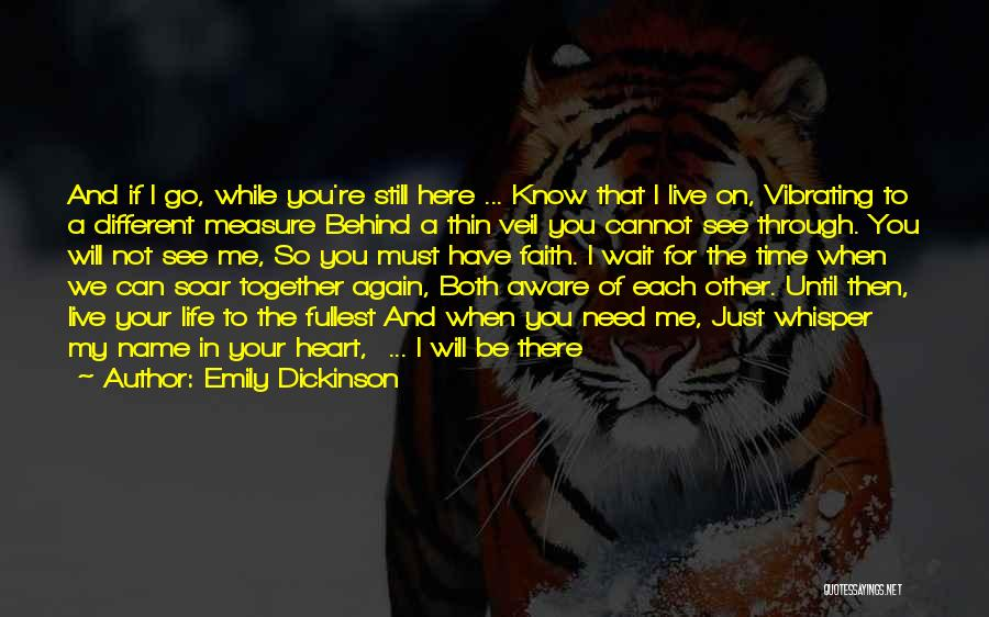 Can't Wait To See You Again Quotes By Emily Dickinson