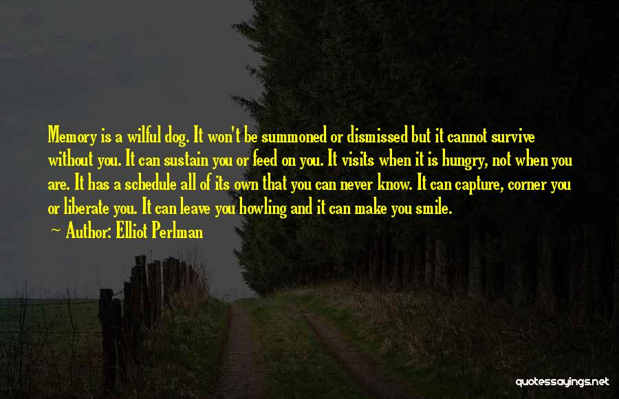 Capture Smile Quotes By Elliot Perlman