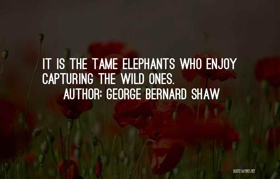 Capturing Self Quotes By George Bernard Shaw