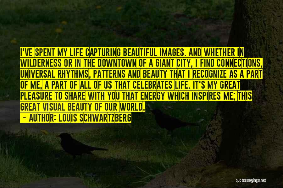 Capturing Self Quotes By Louis Schwartzberg