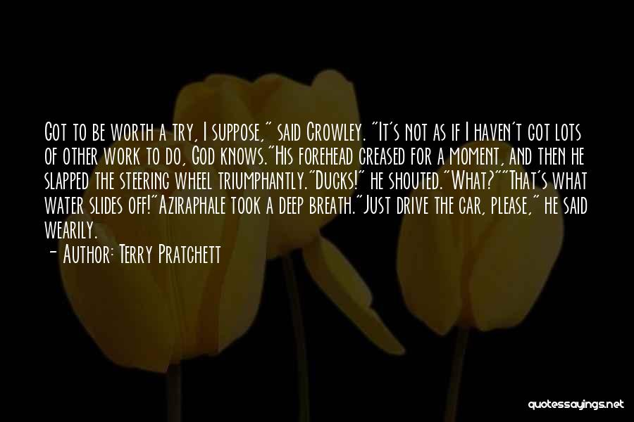 Car Worth Quotes By Terry Pratchett