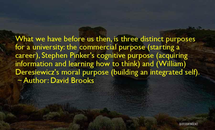 Career And Education Quotes By David Brooks