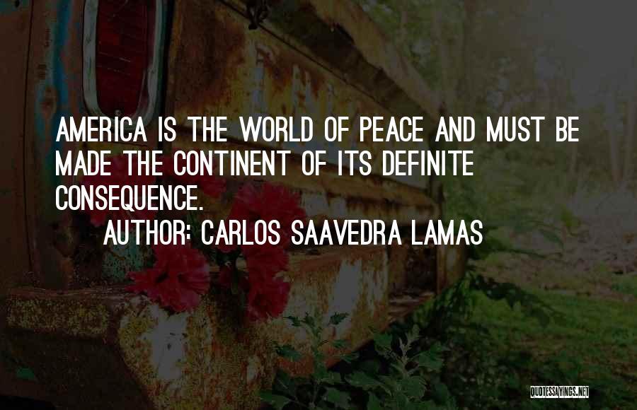 Carlos Saavedra Lamas Quotes 416675