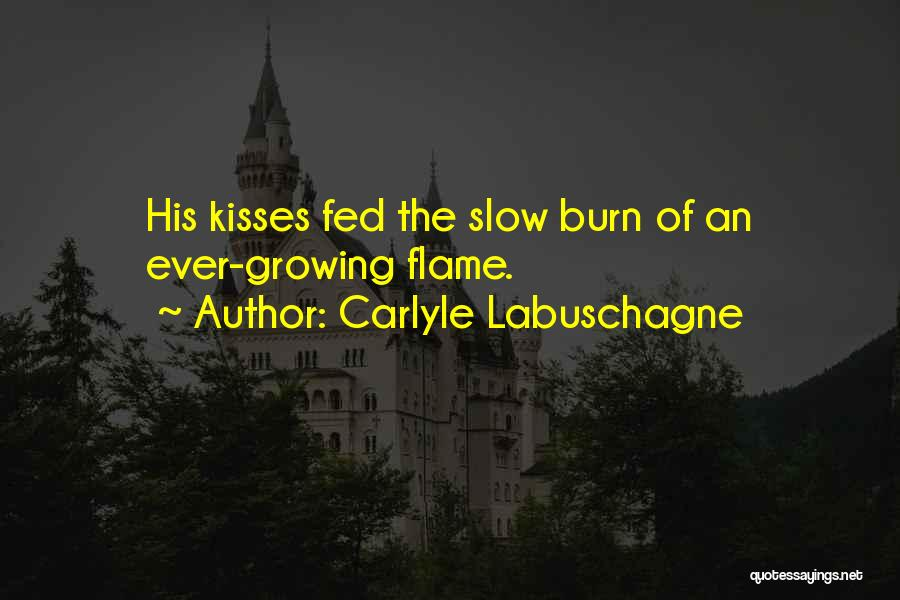 Carlyle Labuschagne Quotes 1118074