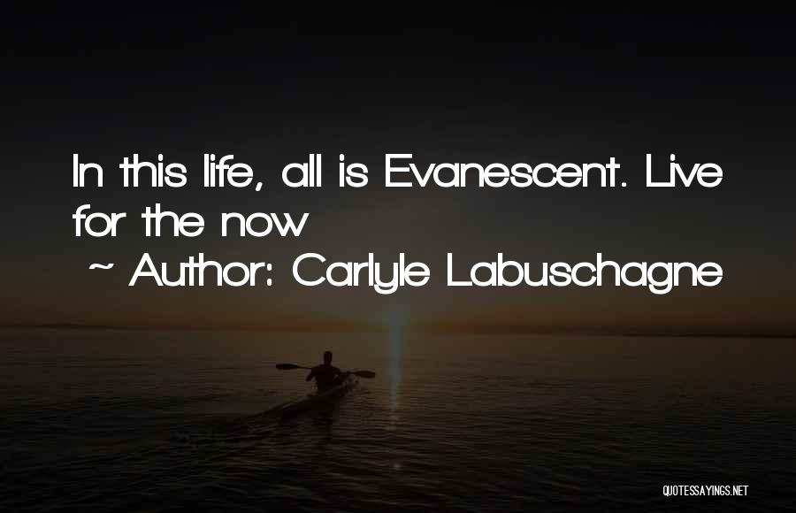Carlyle Labuschagne Quotes 2146363