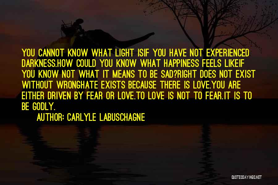 Carlyle Labuschagne Quotes 2198628
