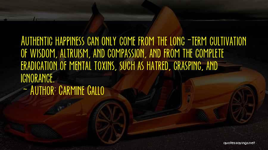 Carmine Gallo Quotes 684207