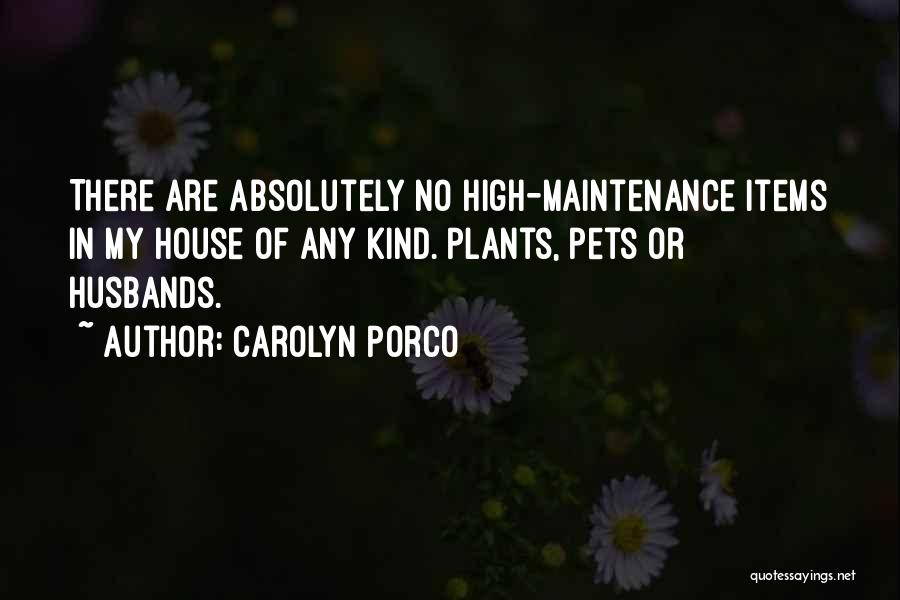 Carolyn Porco Quotes 163397