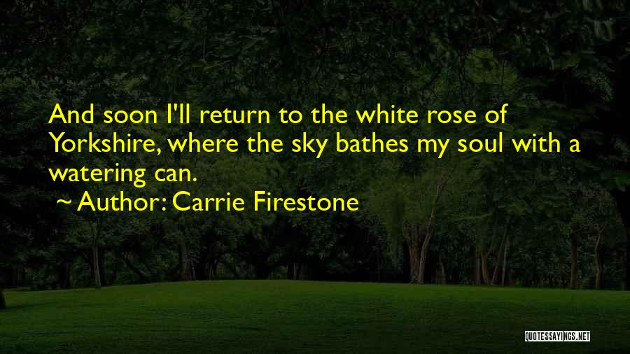 Carrie Firestone Quotes 1963396