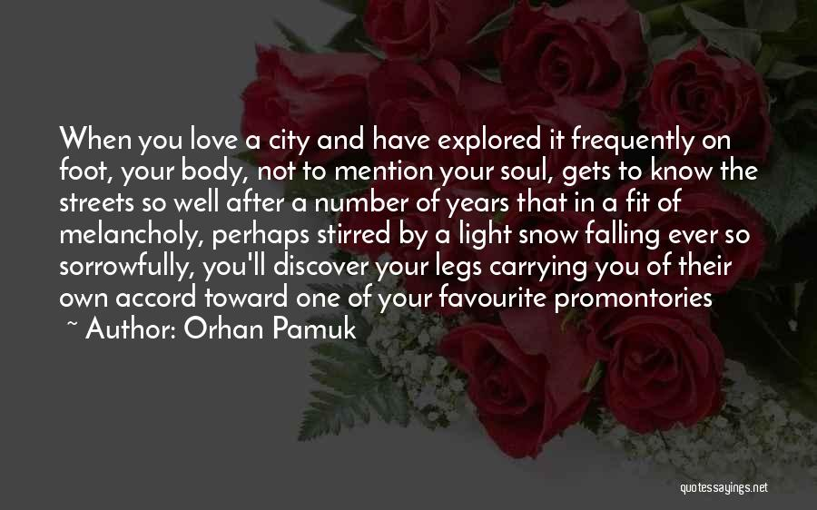 Carrying Someone You Love Quotes By Orhan Pamuk