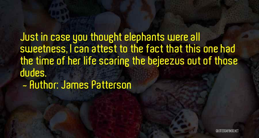 Case Of You Quotes By James Patterson