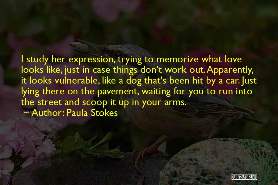 Case Study Quotes By Paula Stokes