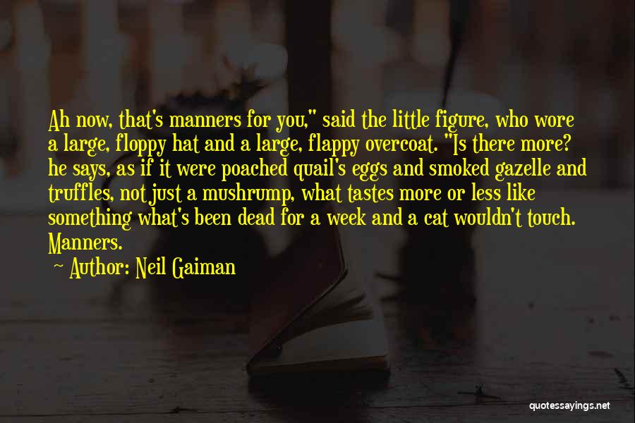 Cat In Hat Quotes By Neil Gaiman