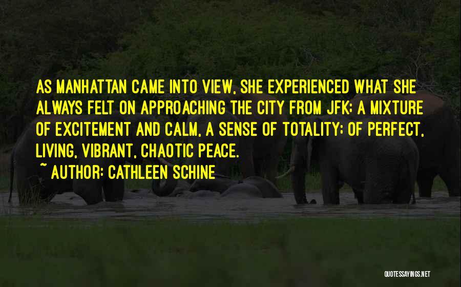 Cathleen Schine Quotes 1280174