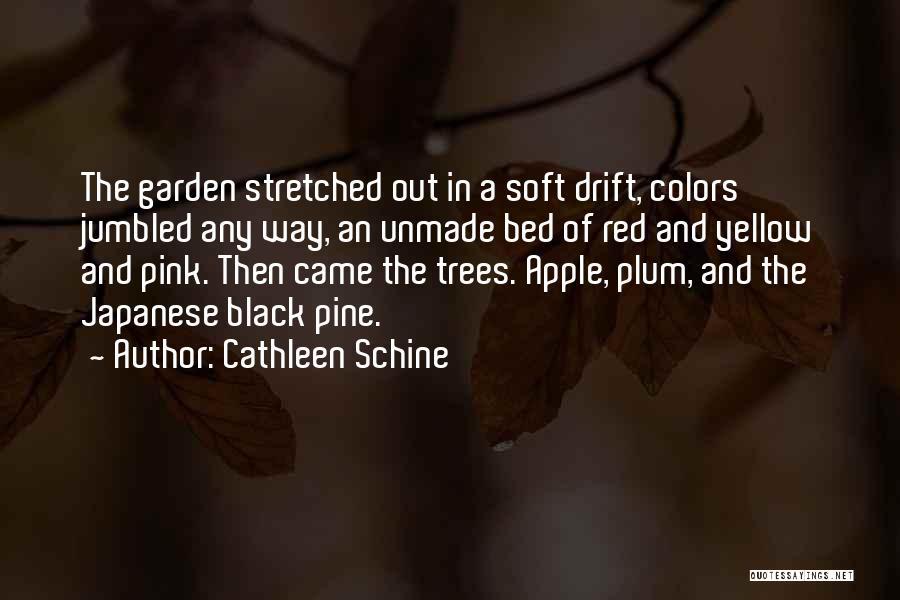 Cathleen Schine Quotes 771135