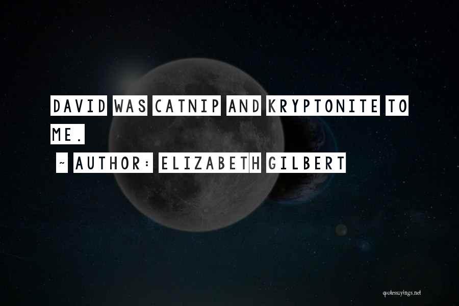 Catnip Quotes By Elizabeth Gilbert