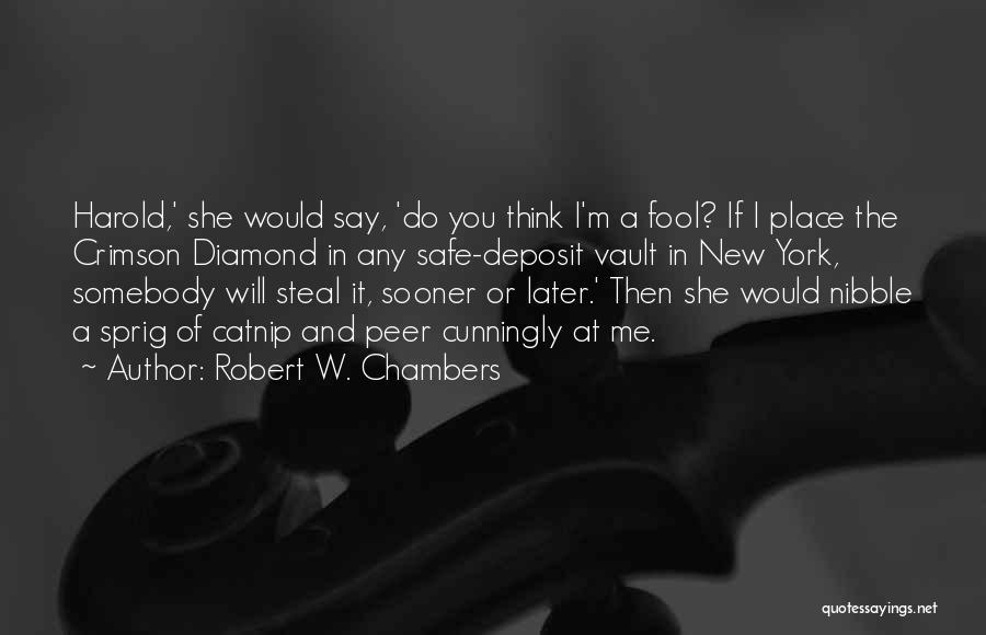 Catnip Quotes By Robert W. Chambers
