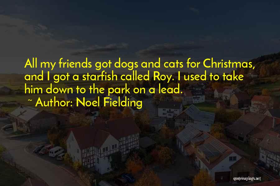 Cats And Christmas Quotes By Noel Fielding
