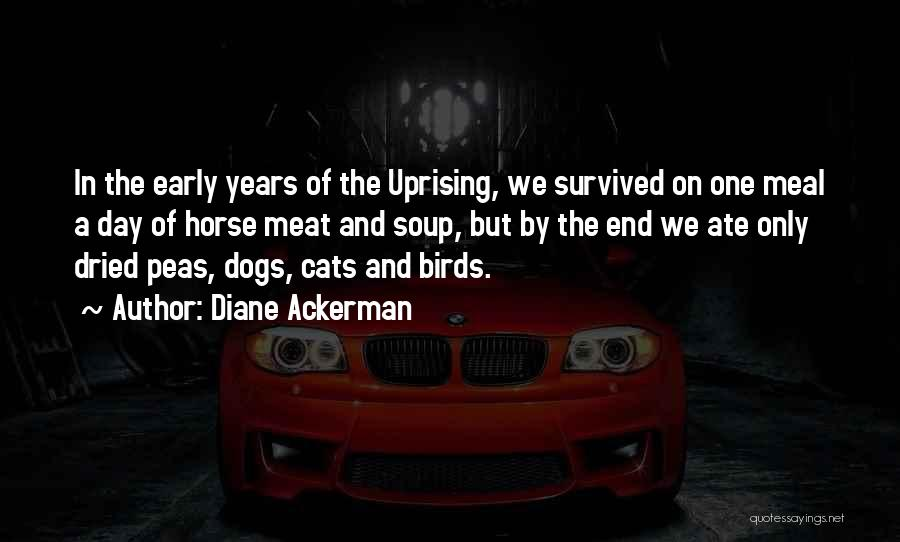 Cats And Dogs Quotes By Diane Ackerman