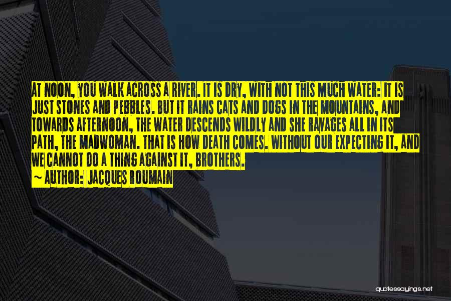 Cats And Dogs Quotes By Jacques Roumain