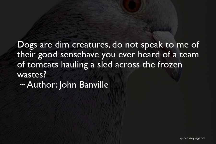 Cats And Dogs Quotes By John Banville